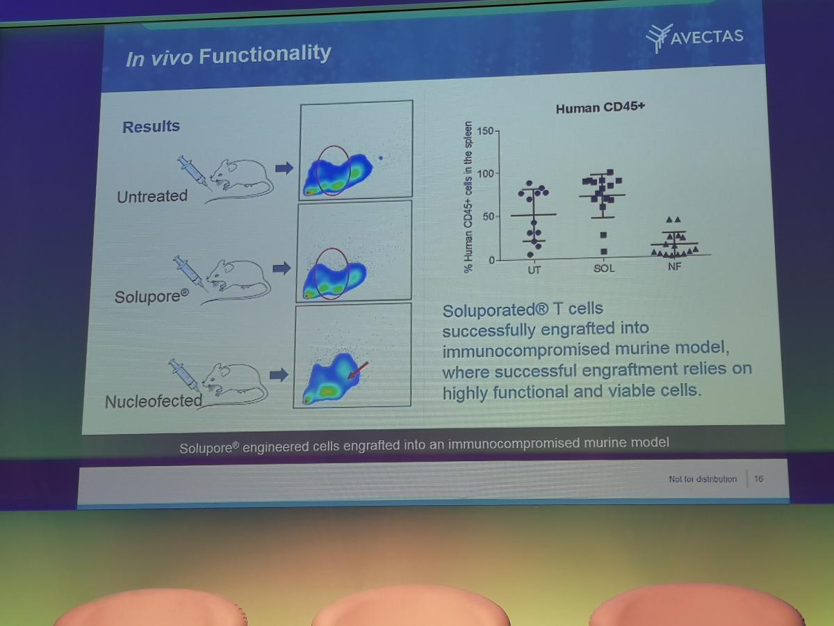VIRALLY TRANSFECTED T CELLS presentation 6
