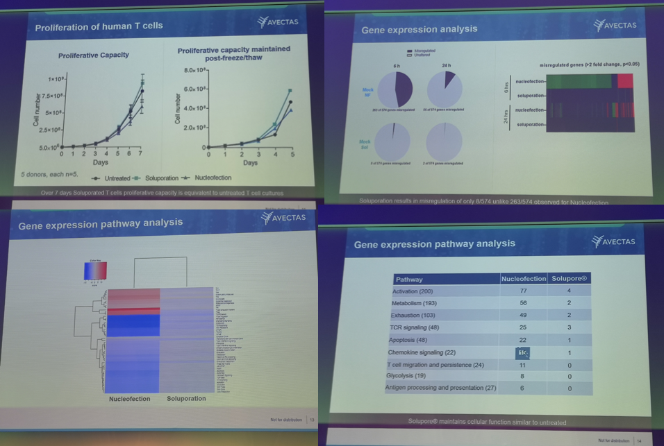 VIRALLY TRANSFECTED T CELLS presentation 4